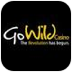 GoWild Handy Casino